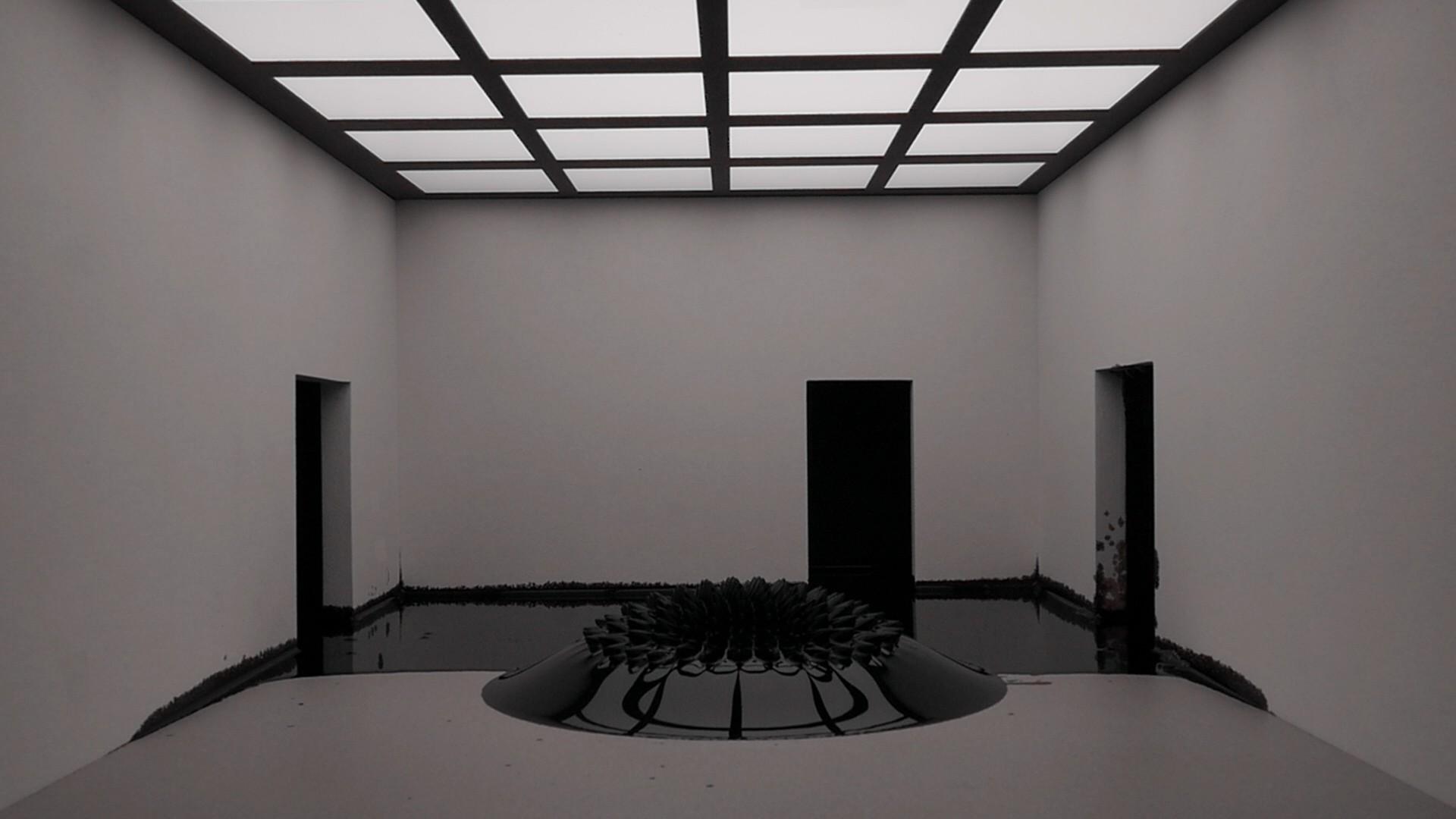 Bogomir Doringer <sub>5.0</sub> Dark Matter <sub>2011-2017</sub>